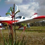 VH-EZT at serpentine airfield kangaroo paw