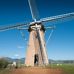 The Lily Dutch Windmill