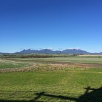 lily dutch windmill and stirling ranges albany