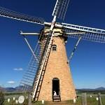 Lily dutch windmill
